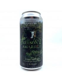 Dual hop IPA - Nelson & Amarillo