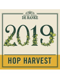 Hop Harvest 2019