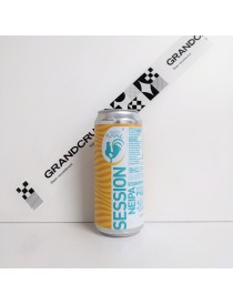 10 Years Old Session Neipa