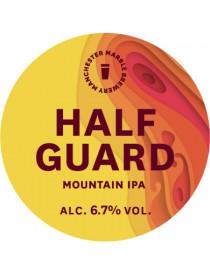 Half guard